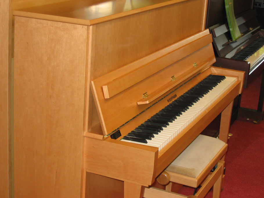 Piano W. HOFFMANN world 120 en Promotion